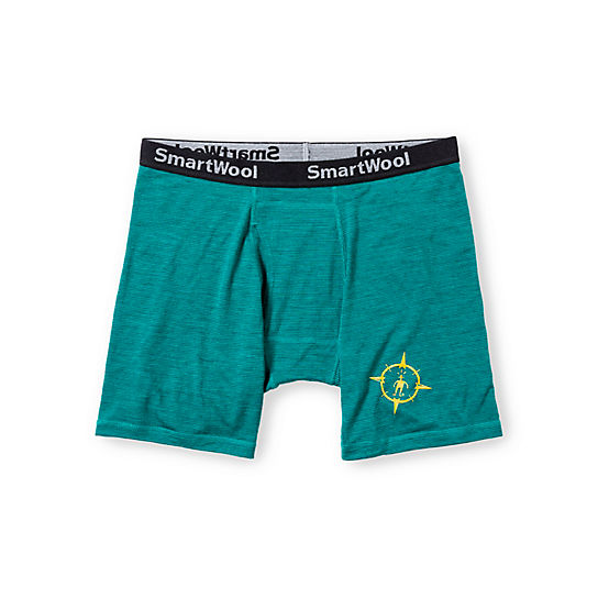 Men's ROAM NTS Micro 150 Pattern Boxer Brief