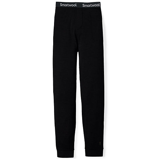 Men's Merino 250 Jogger Bottom