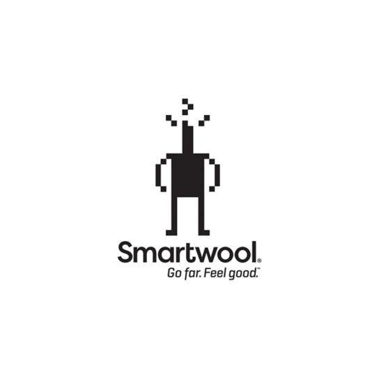 Smartwool | women's nts mid 250 pattern crew | mast general store.