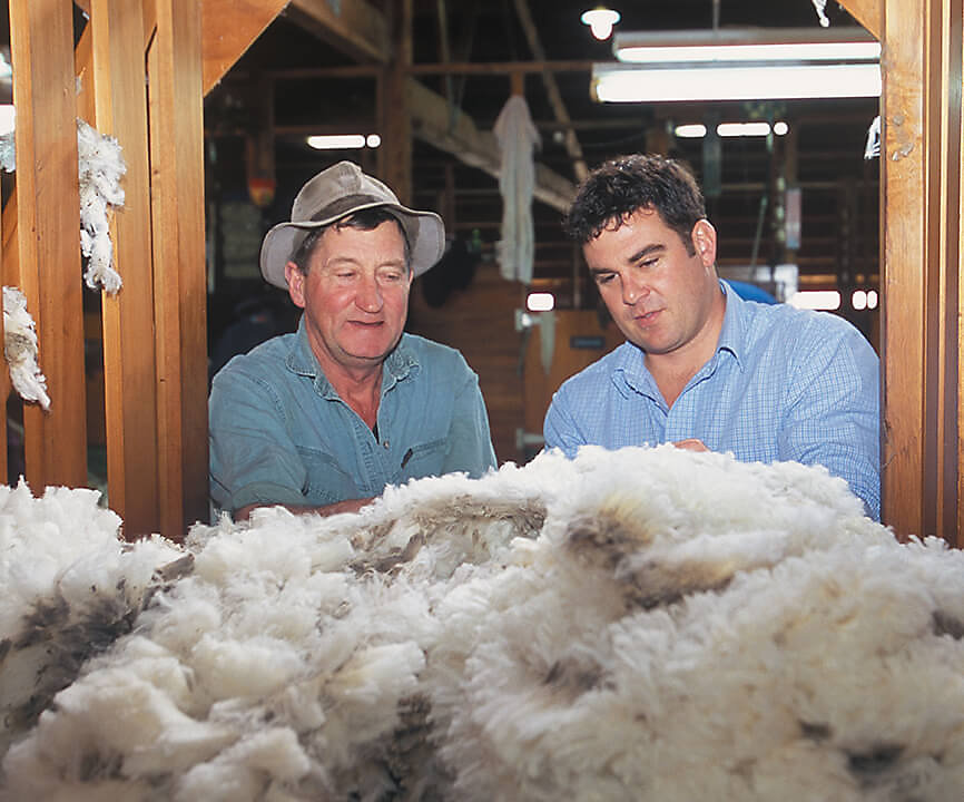 Natural Fibers are the foundation for our sustainable wool